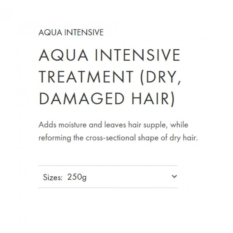 Original Shiseido Professional Sublimic Aqua Intensive Treatment (Weak, Damaged Hair) 250g